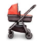 Ark coral carrycot